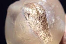 implante roto
